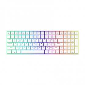Tastatura mecanica gaming Royal Kludge RK100, 100 taste, hotswap, RGB, Keycaps ABS double shot, wireless, cablu, 3750 mAh, RK100